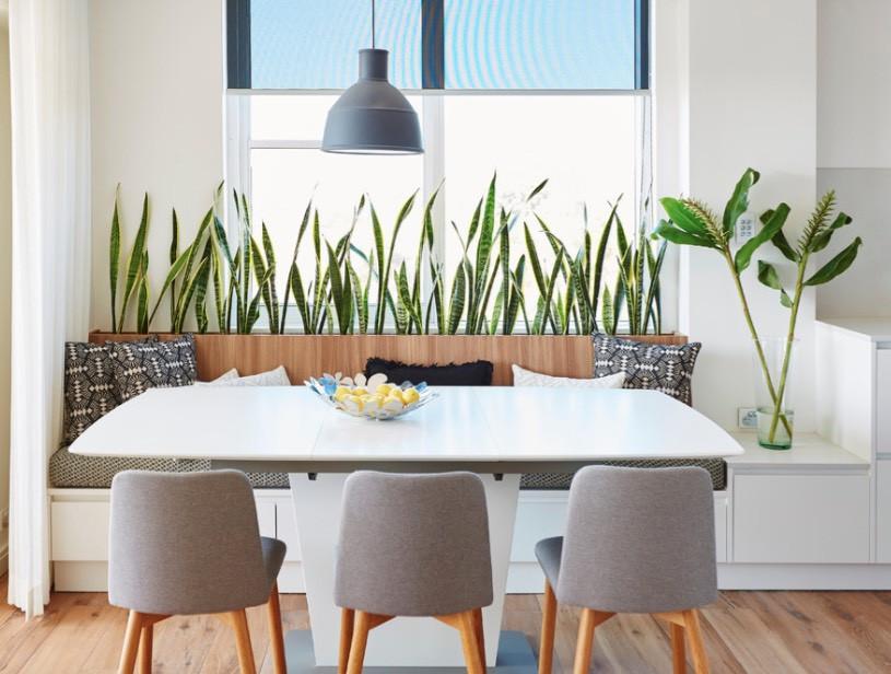 10 Ý tưởng mang không gian xanh vào nhà nhỏ trong lòng Sài Gòn