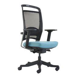 Ghế văn phòng cao cấp BudgetFutra-02